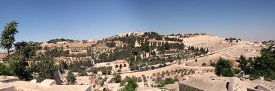 Mt of Olives panorama