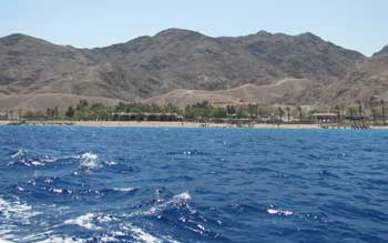 Eilat holidays: the coral reef nature preserve