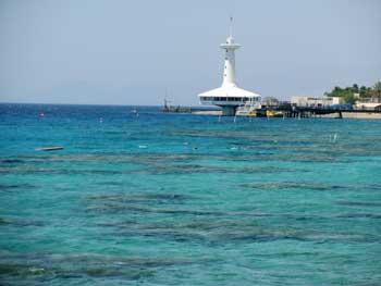 Holidays in Eilat: the Eilat Underwater Observatory