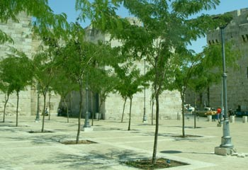 Mamilla Mall by Jaffa Gate, Jerusalem