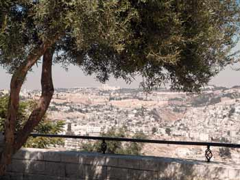 view of Jerusalem from the Haas Promenade