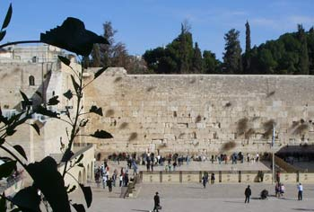 Jerusalem Holy Sites: a Guide to the Many Religious Places ...