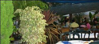 Jerusalem restaurant terrace