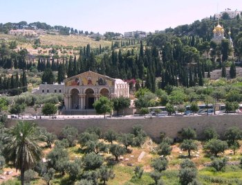Churches on the Mt of Olives