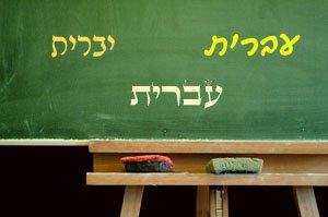 Hebrew letters on green boar