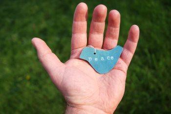 Peace dove in hand